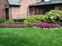 Lawn and Garden Maintenance  Spring Cleanup  Landscaping