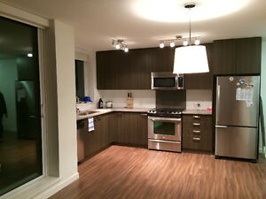Brand new 1 bedroom apartment in Surrey Central