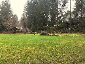 Nature At It's Best - Level Lot Sproat Lake Gem