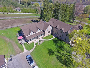 Spectacular 63 Acre Horse Farm W/Two Modern Style Separate Homes