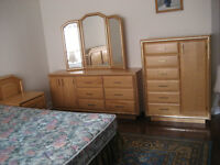 Solid Wood Queen Bedroom Set