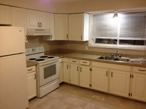 One bedroom basement suite includes utilities and shared laundr