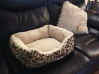 Brand new very cool bed & pillow for small dog or cat
