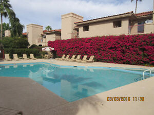 Scottsdale McCormick Ranch one Bedroom Fully Furnished