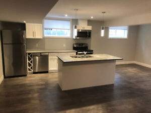Beautiful, Modern and Well Lit One Bedroom Apartment for Rent