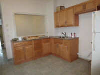 $1900 / 4br - Big and newly renovated apartment (Plateau)