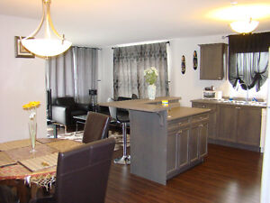 Luxury fully furnished Two&One bedroom condos monthly/weekly1750