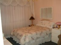 DOWNTOWN  FURNISHED BEAUTIFUL LARGE BED ROOM