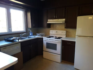 Main Level 3 Bedroom St Albert
