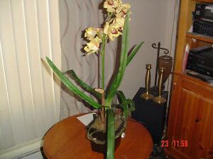 Fleurs orchidées artificielles avec pot