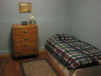 Room rental /Boarder ( available immediately)