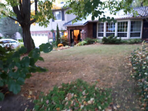 FONTHILL HOME FOR RENT  SHORT TERM  JAN 1 to  APR/ MAY 30, 2019