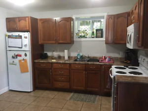 2 bedroom apartment in bible hill