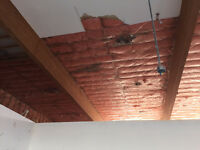 drywall, insulation demolition, removal and clean up