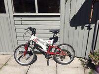 """Silverfox Vibe 20"""" Kids Bike"""