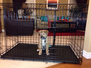 **Like New** XL Dog Crate
