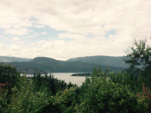 View of Shuswap Lake and Copper Island. MLS® 10106365