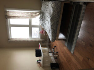 Winter lease! 1 bedroom available in a 4 bedroom apartment
