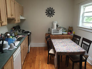 1 Room in a 3 BDR south end Halifax Apartment