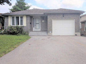 GORGEOUS DETACHED-3 BDRMS,STAINLESS STEEL APPLIANCES-KITCHENER