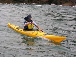 Bonjour,recherche kayak a donner. (réparation nécessaire)