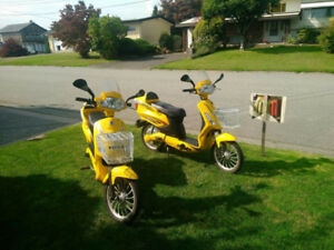 2 Electric Scooters (Like New)
