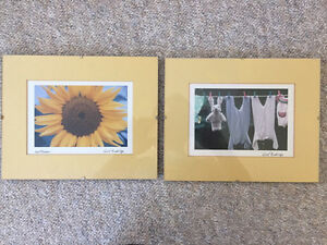 """Two Glass 4"""" X 6"""" Photo Frames"""