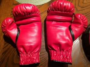 Boxing gloves and targets for young girl or boy Regina Regina Area image 2