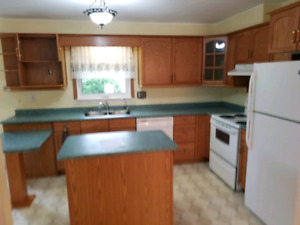 House for Rent in Niverville