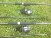 2x Carp rods and reels + weights + mackerel kits + feeder rod for free