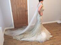 Farage wedding dress