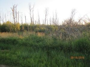 Thorhild County 10 acres only $59,00 Tax assessment is $74,780