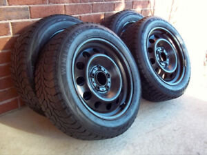 Winter Claw Extreme 205/55-16 BMW Winter Tires