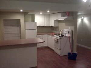 1 bed 1 bath basement suite in north broadview Available feb 1