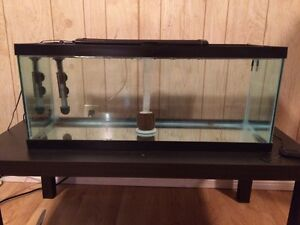 High quality fish items for sale. 75 gal, 36 gal, fx6