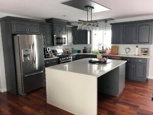 Kitchen cabinets great deals on home renovation materials in custom kitchen cabinet painting bring on spring sale solutioingenieria Choice Image