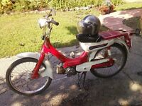 1974 Honda PC50 Moped