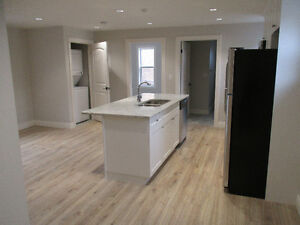UPTOWN WATERLOO - 1BR STORE TOP APARTMENT