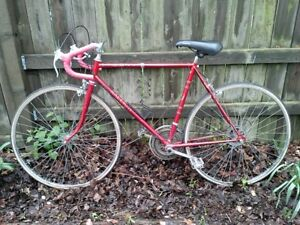 Raleigh 10 speed for 60