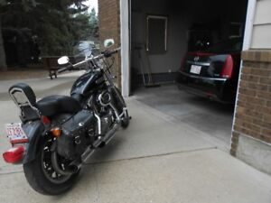 2007 Harley Davidson sportster low