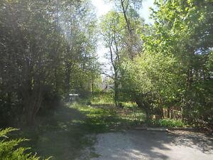 Park-Like Yard, Walk Downtown, UWO,
