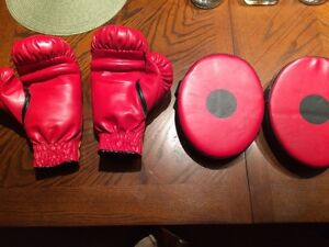 Boxing gloves and targets for young girl or boy Regina Regina Area image 1
