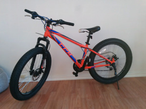 Vélo de montagne CCM fat bike