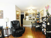Renovated 1 Bedroom: Steps to Westend, Seawall and Yaletown. (13