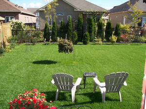 NEW! LAWN MOWING SERVICES - 2015 ACCEPTING NEW CLIENTS Kitchener / Waterloo Kitchener Area image 8