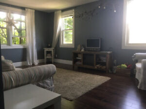 Bright and spacious 2 bedroom apartment near downtown/Queen's