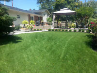 LAWN CUTTING TIME!  GREENSCAPES NIAGARA OFFERS TOTAL LAWN CARE