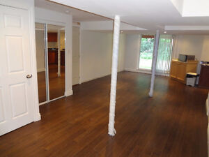 Walk Out Basement Apt/Private Entrance, Steeles & Markham Rd