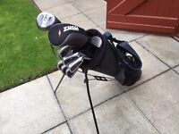 Golf clubs. Full set of irons 3-sw, driver, 5 wood, putter & bag. Mint Condition..