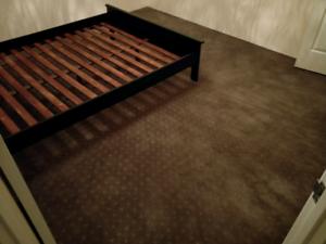 Free carpet (80sqm)